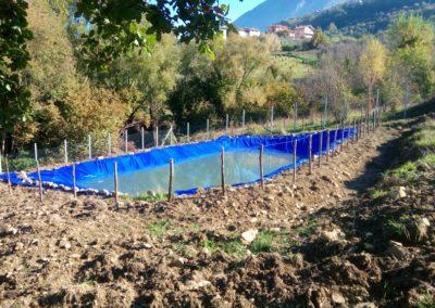 impianto-elicicoltura-bacino-irrigazione