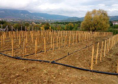impianto-elicicoltura-irrigazione